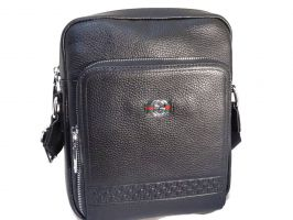 Кожаная сумка Gucci (Гуччи)_0
