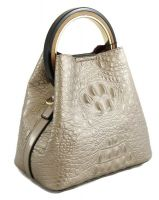 Сумка женская Bonilarti Oalengi 8846 A1 Y208-85K Silver Gray