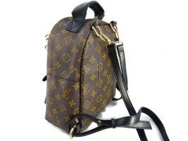 Рюкзак Louis Vuitton (Луи Виттон) MINI_1