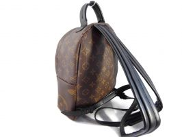 Рюкзак Louis Vuitton (Луи Виттон)_1